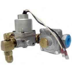 Accessory - S25/S34 - Valve/Regulator Assembly with Propane/Natural Gas ---NG - 22021 2