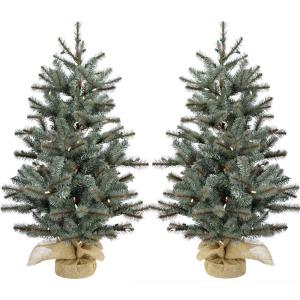 Heritage Pine - 2' Artificial Trees with Burlap Bases (Set of 2)