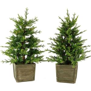 Royal Pine - 4' Artificial Potted Trees with Battery-Operated LED Lights (Set of 2)