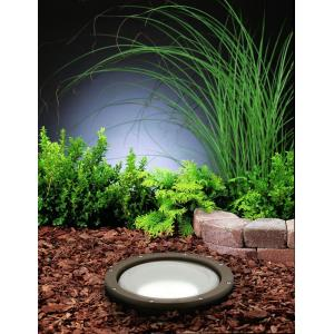 - HID Line Voltage 1 light Well Lamp - with inspirations - 13 inches tall by 9.75 inches wide