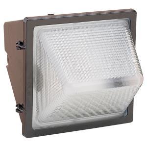1 Light Outdoor Flood Light